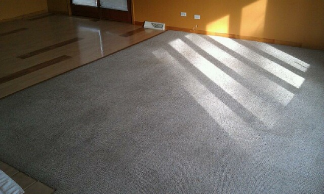Carpet Cleaning Kane County